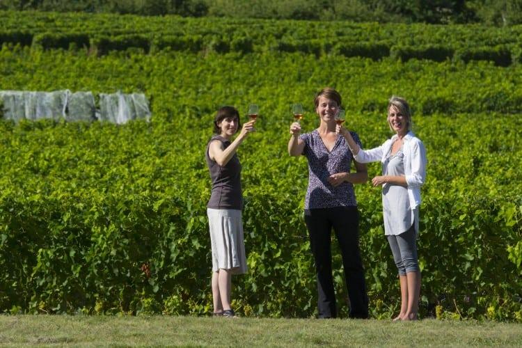 Journée portes ouvertes sur la Route des vins de Brome-Missisquoi - Crédit photo : Jean-François Bergeron