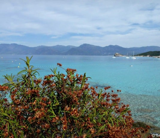 Plage de la Corse - Agriates