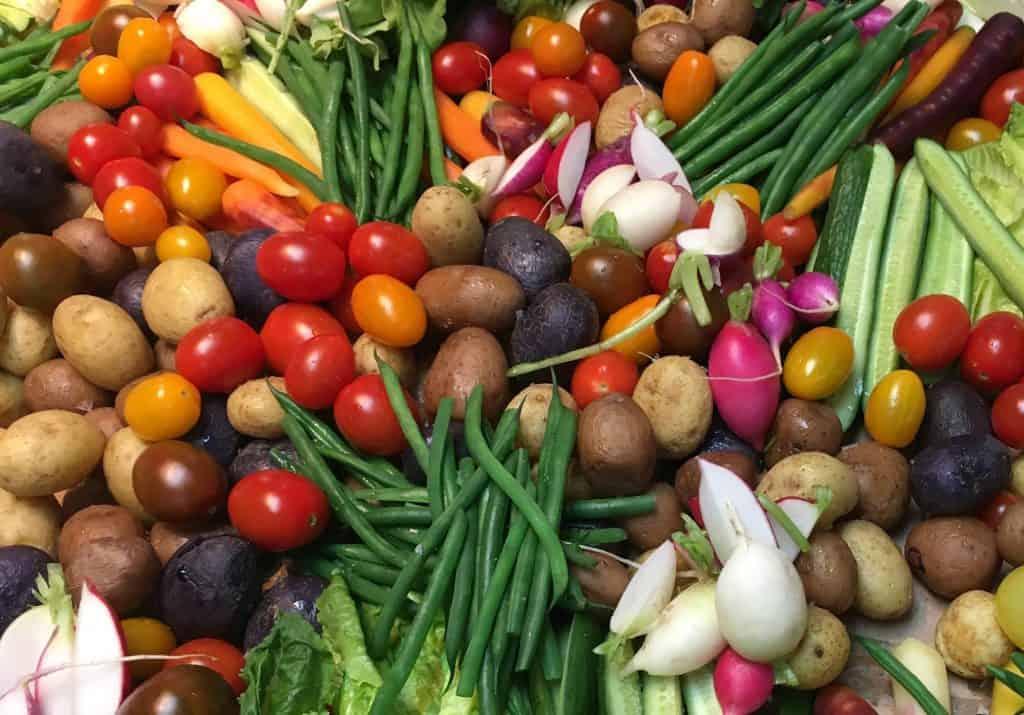 Le temps des récoltes - plein de légumes