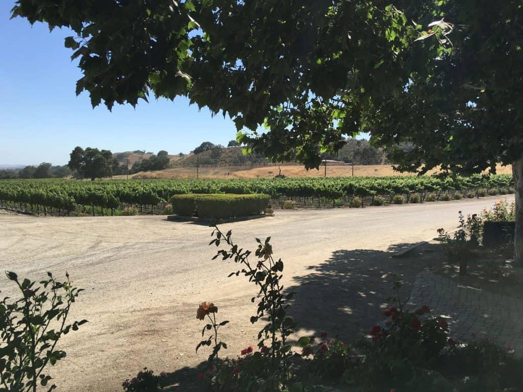 Vignobles - Santa Ynez