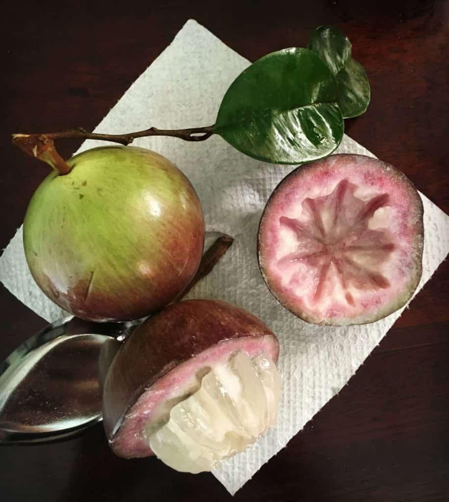 Pommes de lait - guide gourmand du Vietnam