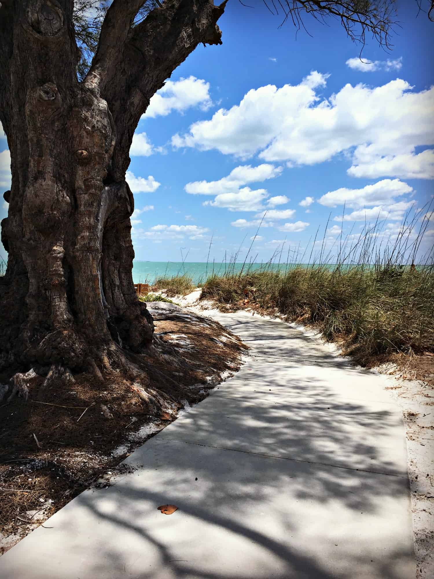 Sarasota : la perle méconnue de la Floride