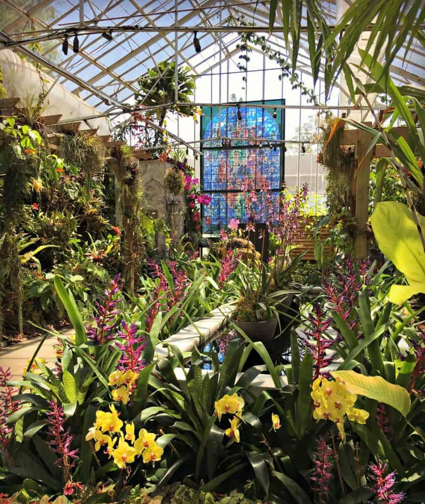 Marie Selby Botanical Garden - Sarasota Floride
