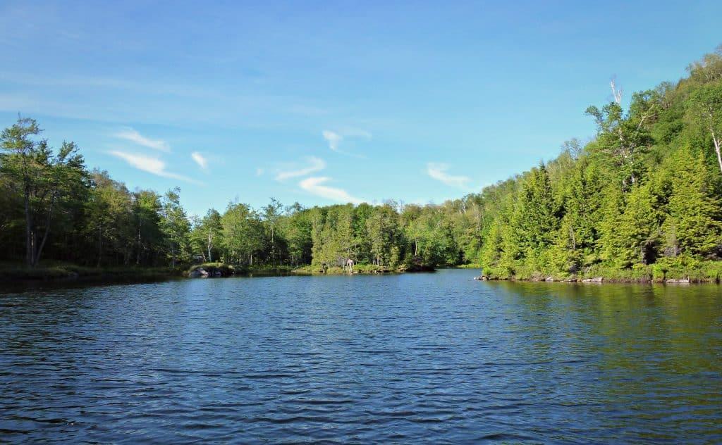 Kenauk Nature - Montebello- Québec