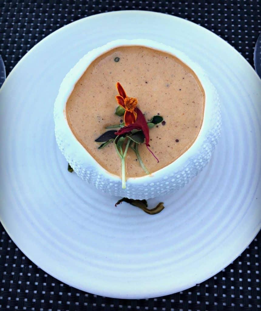 Soupe oursin du Québec, espuma, creme fraiche- restaurant Poivre Noir - Trois-Rivières