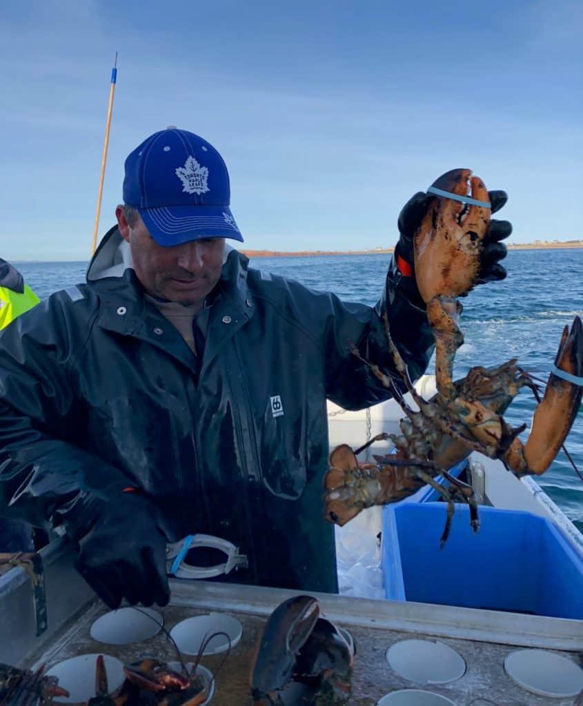 Pêcheur de homard aux Îles de la Madeleine