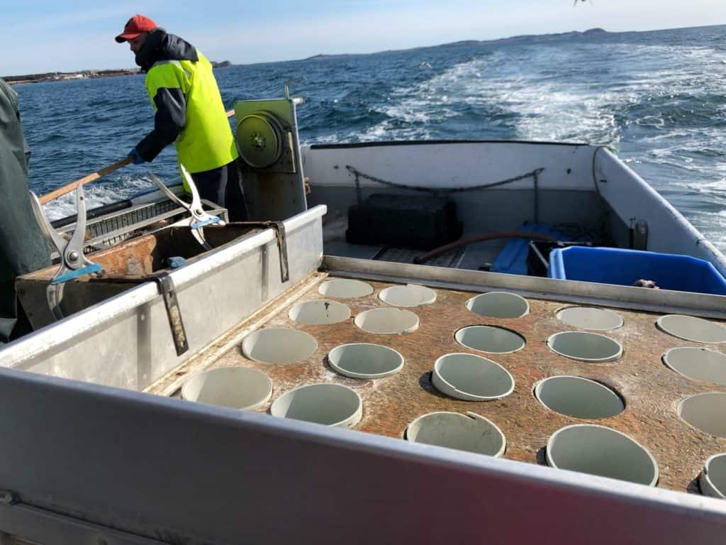 Il faut remonter les cages aux homards qui ont été mises à l'eau - La pêche aux homards aux Îles de la Madeleine : de l'océan à notre assiette
