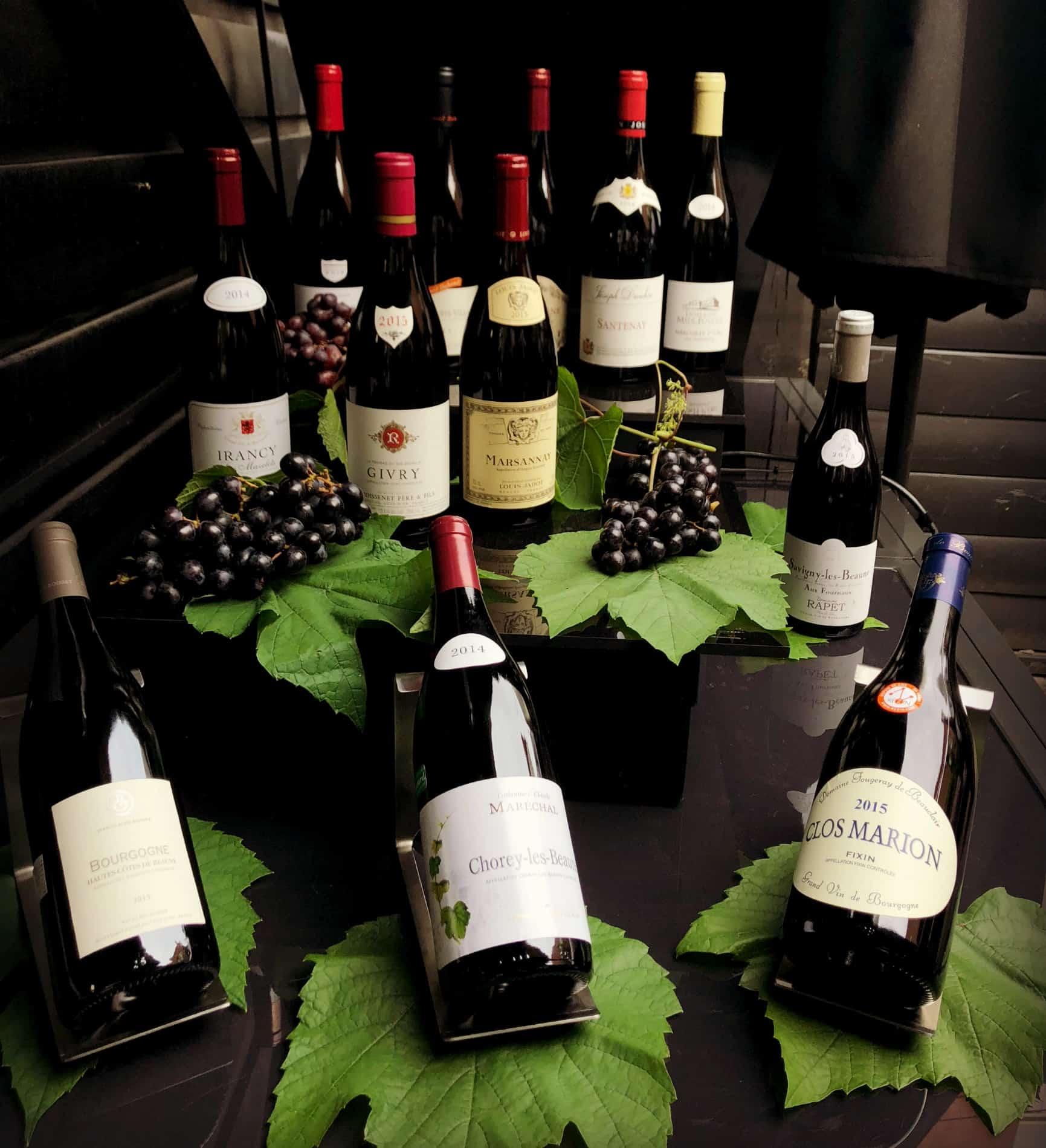 Pinot noir - Vins de Bourgogne