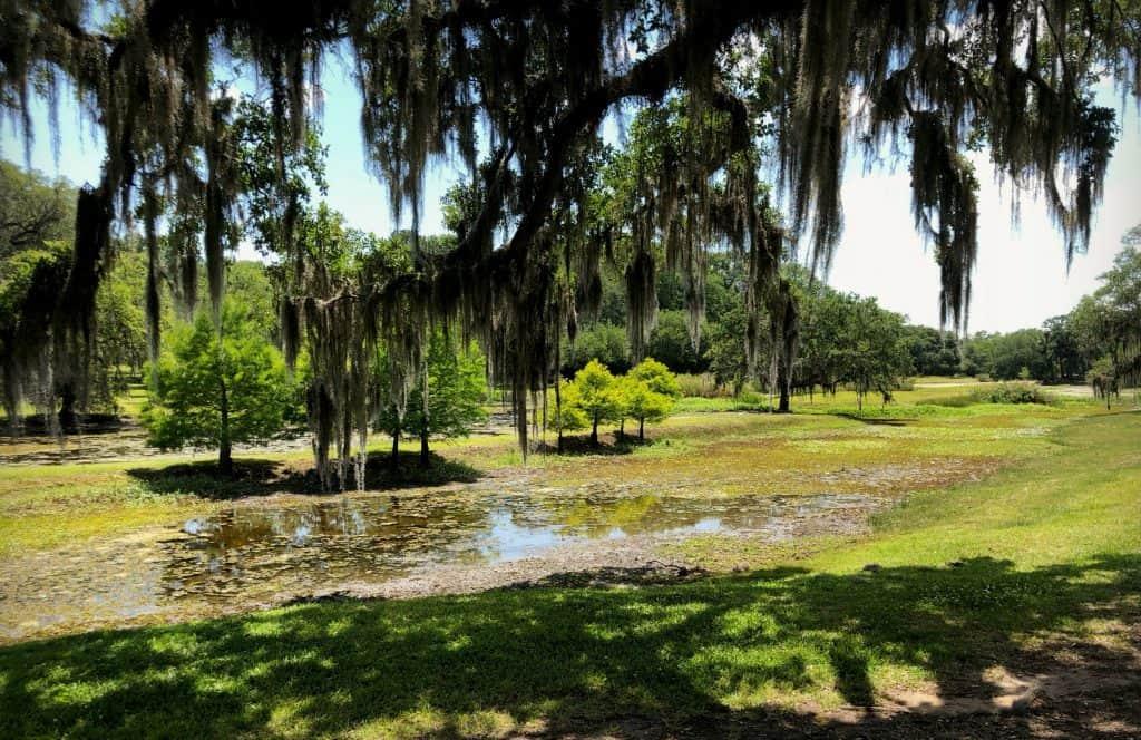 Jardins - Avery Island