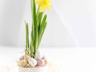 Idées de recettes et décoration pour Pâques