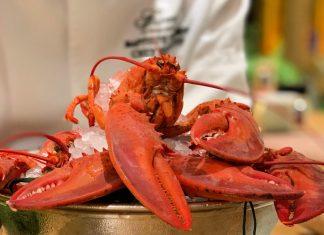 Tout sur le homard