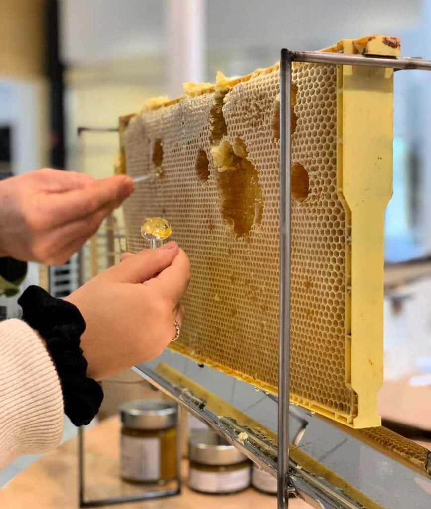 Miel à déguster au Grand Marché de Québec