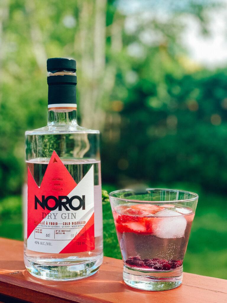 Gin tonic aux petits fruits avec le gin aux petits fruits Noroi