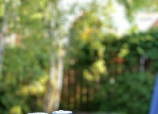 Le Marie-Vic, le gin-tonic prêt-à-boire de Les Subversifs