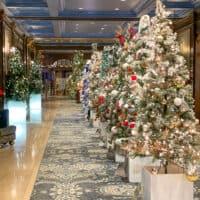 Les sapins de Noël du Chateau Frontenac