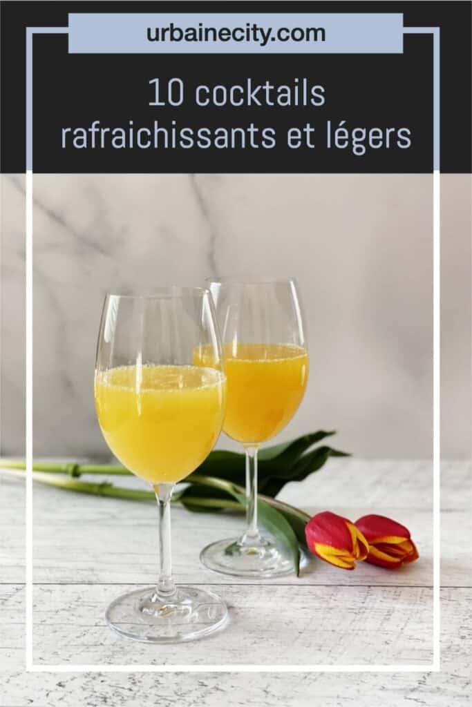 10 cocktails rafraichissants et légers