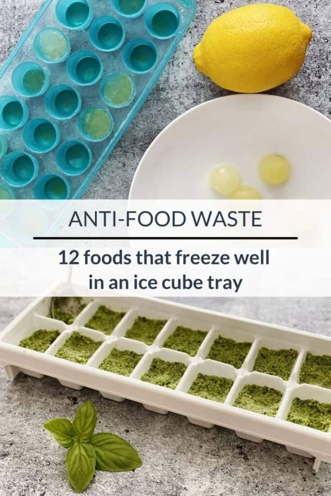 12 foods that freeze well in an ice cube tray