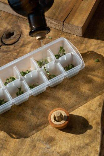12 aliments qui se congèlent dans des bacs à glaçons